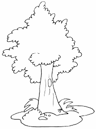 Coloring Page Of Tree Coloring Pages