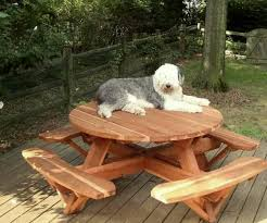 olaf on his round picnic table options 4 5 diameter attached benches