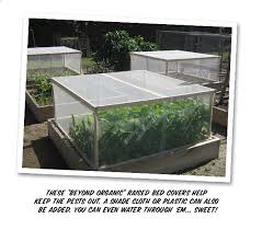 raised bed pest cover