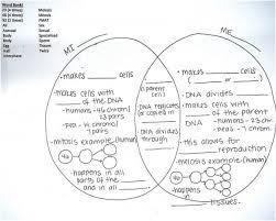 Venn Diagram Meiosis And Mitosis Mitosis Vs Meiosis Venn Diagram Magdalene Project Org