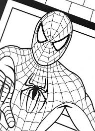 Small Picture Spiderman colouring sheet Check out our other activity sheets