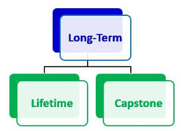 types of goals lifetime short term long term long term goals