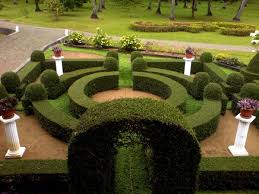 Small Picture Landscape Design Sydney Modern Garden Designs Garden Design And