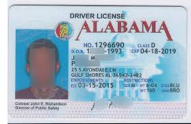 State License New Casinibrothers Drivers York Template - Psd Download