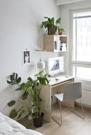 indoor home office plants royalty. plants for office space seven good reasons to have in your home u2013 mocha indoor royalty