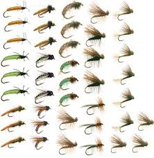 Fly Fishing Flies Chart Caddis Trout Fly Fishing Flies Collection 42 Flies Fly Box