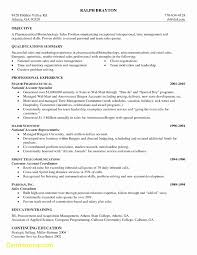 Excellent Cv Resume Template Nz Contemporary Resume Ideas
