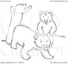 Small Picture Bear Cub Tree Coloring PageCubPrintable Coloring Pages Free Download
