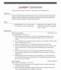 Web Product Manager Sample Resume Gorgeous Senior Product Manager Resume Example The Topps Company San