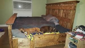 pet friendly furniture. PetFriendly Bedroom Furniture Pet Friendly