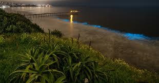The <b>ocean blue</b>: Bioluminescence glows along the La Jolla coast ...
