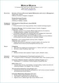 Resume Examples Pdf Awesome Stay At Home Mom Resume Examples Luxury Stay At Home Mom Resume