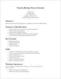 Good Summary For Resume Fascinating Server Qualifications Resume Examples For Good Summary A 60 Customer