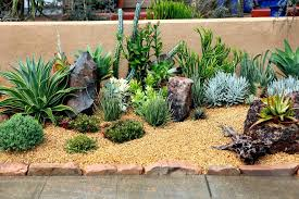 succulents design creative inspiration 2 succulents garden design indoor and outdoor succulent garden ideas succulent container succulents design