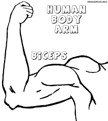 Small Picture 99 ideas Dltk Coloring Pages Body Parts on kankanwzcom