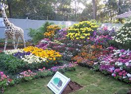 Small Picture 29 beautiful Landscape Gardening Courses In Pune izvipicom