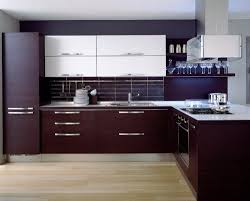 Kitchen:Dark Purple Cabinets With White Countertops And White Cupboards  Single Sink Contemporary Kitchen Cabinets