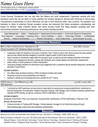 Substance Abuse Counselor Resume Sample Professional Substance