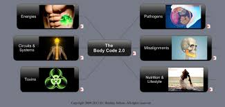 Exceptional Healing With The Body Code The Body Code