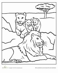 Pride Coloring Pages Color The Lion Pride Worksheet Education Com