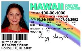 News Driver To By Be Island Hilo Tests And Hawaii Road License Appointment Information Offered