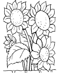 Small Picture Coloring Pages Of May Flowers Coloring Pages