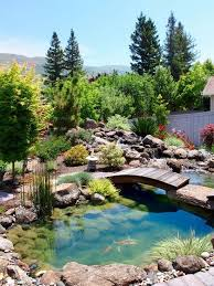 Small Picture 40 Amazing Backyard Pond Design Ideas Pond design Backyard and