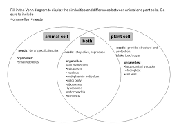 Comparing Animal And Plant Cells Venn Diagram Plant Cell Venn Diagram Under Fontanacountryinn Com