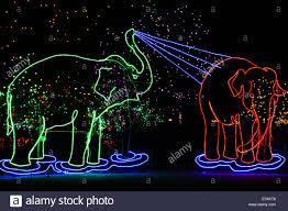 Zoo Lights Colorado Christmas Lights Shaped Like Elephants Denver Zoo Lights