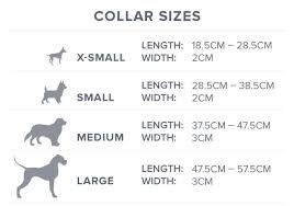 Puppy Collar Size Chart 6 Factors To Consider When Choosing A Dog Collar