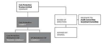 Northern Trust Org Chart About Our Structure Governance And Management Cats Protection