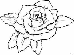 splendid coloring page of a rose colouring for pretty flowers and pictures roses