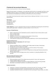 Chartered Accountant Resume Mike S Blog