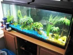fish tank lighting ideas. Fish Tanks Designs Ideas Tank Lighting