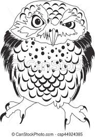 hand drawn black white ilration owl fly bird art coloring book owl