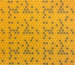 Image result for honeycomb quilt | Quilt | Pinterest | Honeycombs & Image result for honeycomb quilt Adamdwight.com