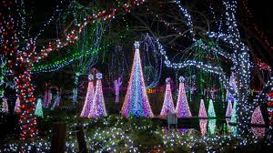 Zoo Lights Columbus Ohio 2018 Top Spots 25 Light Displays Shows Concerts And More That