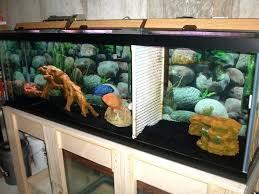 fish tank divider 55 gallon stupendous fish tank divider photo inspirations diy 55 gallon fish tank fish tank divider