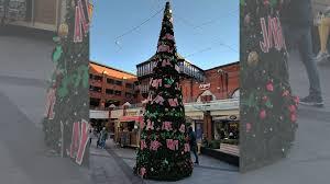 Are These Britainu0027s Worst Christmas Trees  BBC NewsbeatWorst Christmas Tree