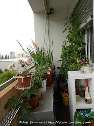 apartment balcony garden ideas images