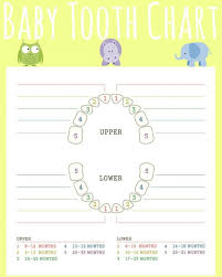 Teething Chart Babies Baby Teeth Chart What Order Do They Come In Mama Natural Infant