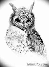 эскизы тату сова мужские 09032019 036 Tattoo Sketches
