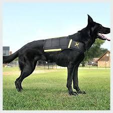Rabbitgoo Dog Harness Size Chart Top 10 Service Dog In Training Vest Big Dog Sport