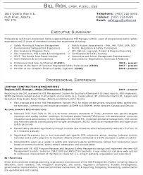 Summary In Resume Example Sample Executive Summary Resumes Resume