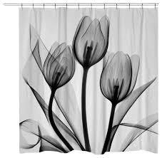 Image Amazon Houzz Black And White Tulips Shower Curtain