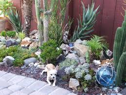 succulent garden landscape ideas shade garden design ideas cactus container garden in succulent yard design