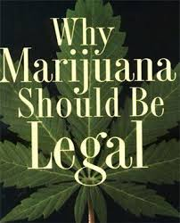 best politics koch brothers images koch  medical marijuana is focused on helping improve the lives of those who are in pain through