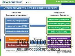 контрольные органы Государственные контрольные органы