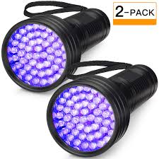Can You See Bed Bugs With A Black Light 2 Pack Uv Flashlight Black Light Folksmate 51 Led 390 395 Nm Ultraviolet Blacklight Urine Detector For Dogs Pet Stains Bed Bugs Scorpions