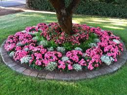 circular shade loving annuals flower bed